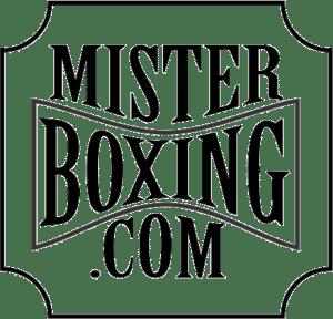 equipamiento y accesorios para el boxeo y las artes marciales misterboxing.com